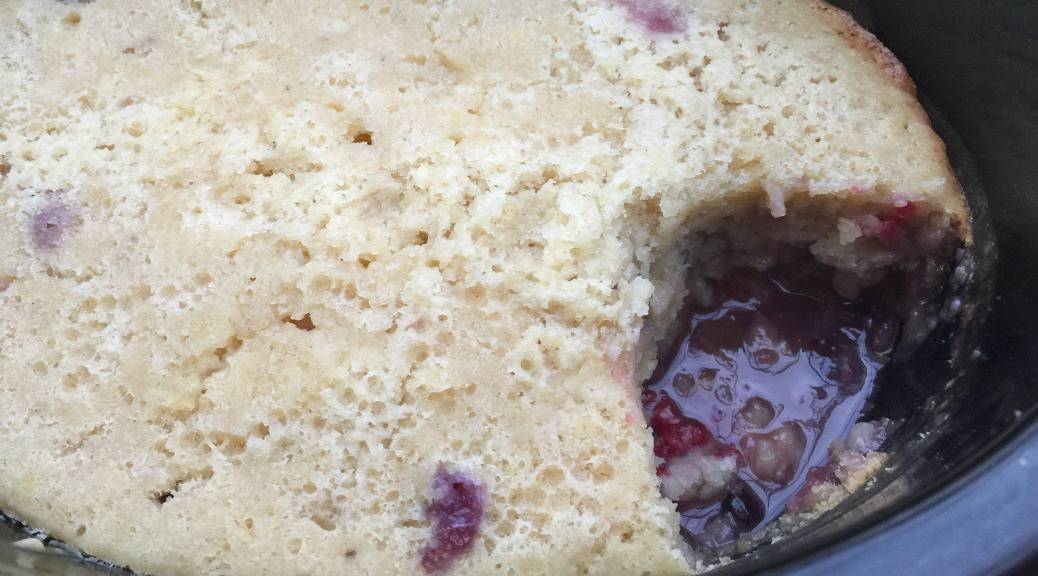 Slow Cooker Lemon and Berry Self-Saucing Pudding