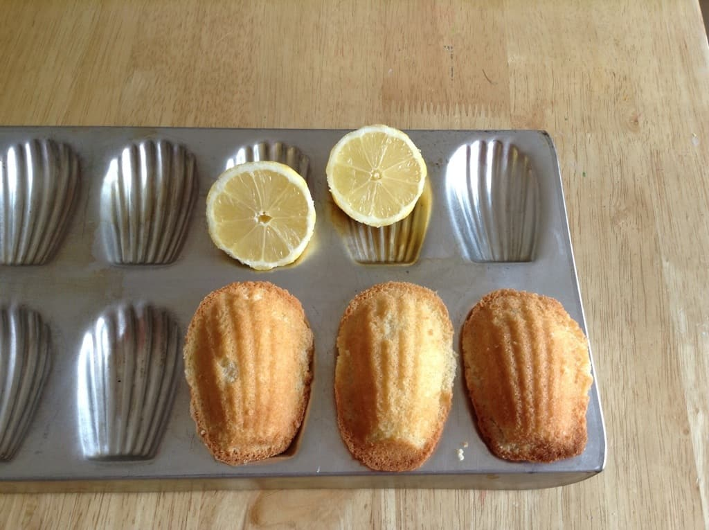 Vanilla and lemon madeleines by BakingQueen74