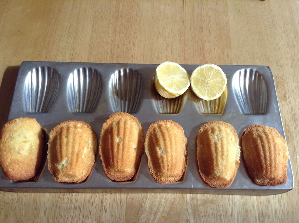 Vanilla and lemon madeleines by BakingQueen74