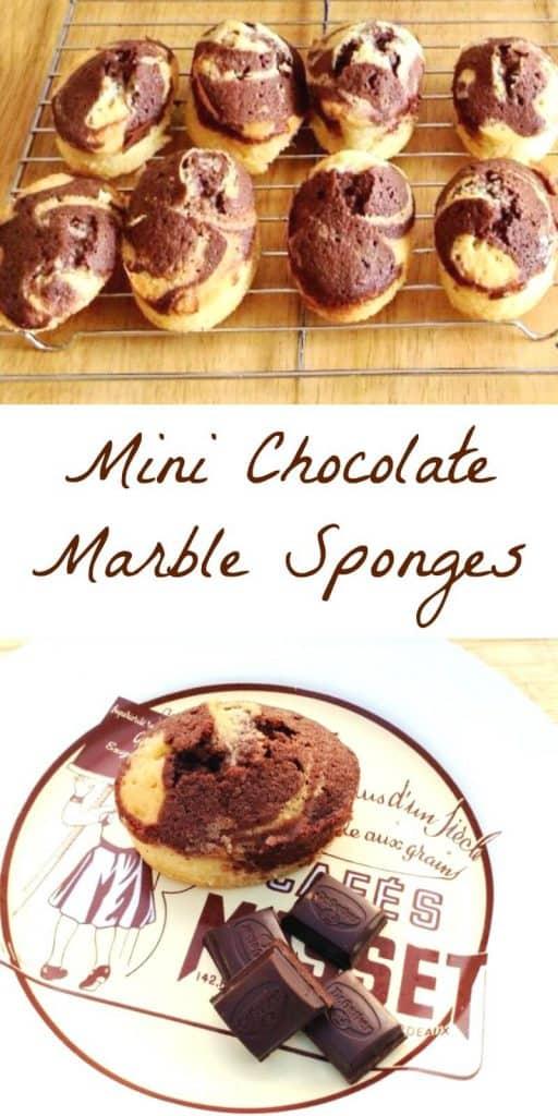 Mini Chocolate Marble Sponges
