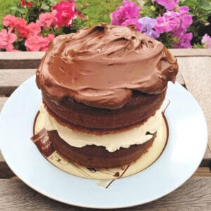 Chocolate cake on a light blue plate, with garden flowers in the background.