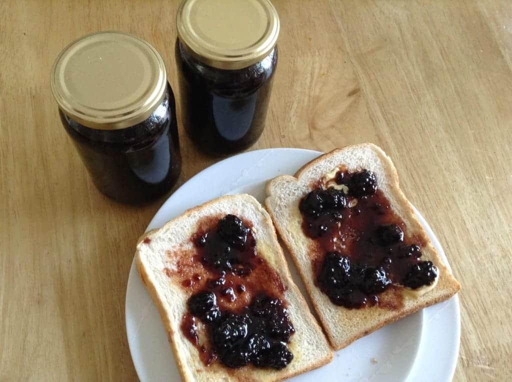 Slow Cooker Blueberry and Ginger Jam and Blackberry Jam