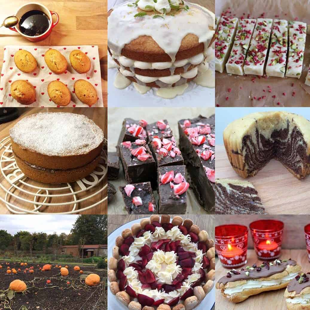 2015: A Year in Review for BakingQueen74
