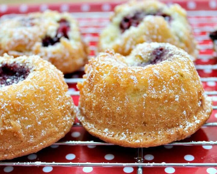 Blackberry Mini Bundts