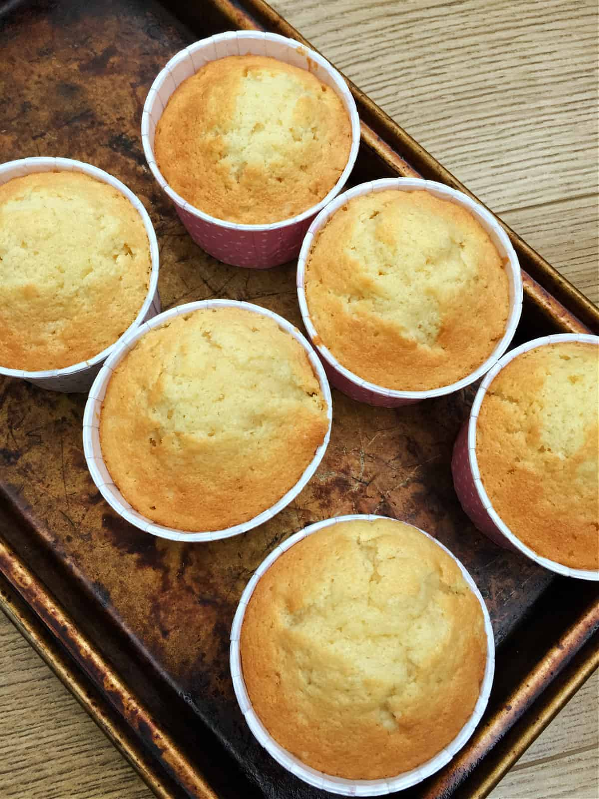 6 vanilla cupcakes after baking, in tin.
