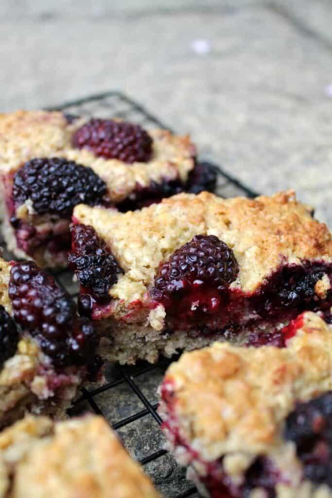 Blackberry oaty traybake cake