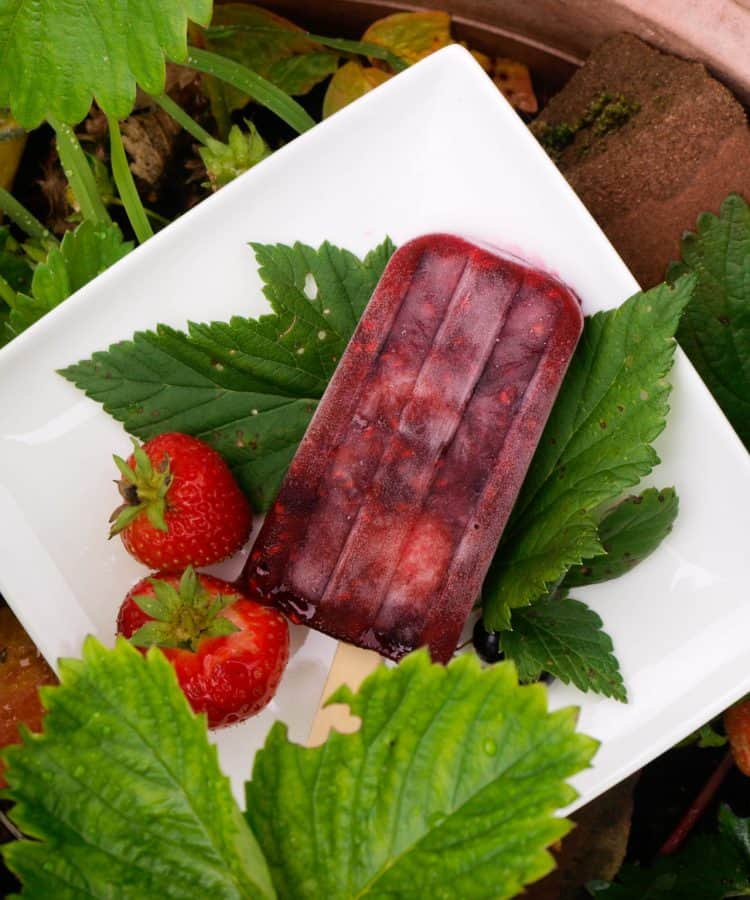 Summer Pudding Ice Lollies from Farmersgirl Kitchen